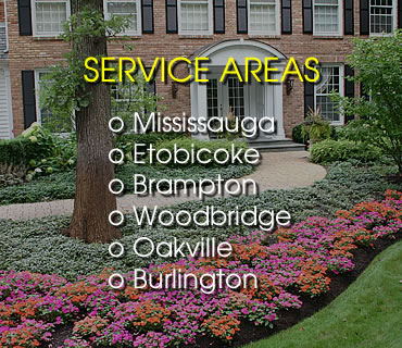 Lawn Care Service Areas